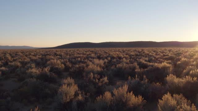 vídeos y material grabado en eventos de stock de scenic view flying over fields of shrub toward mountains - estepa