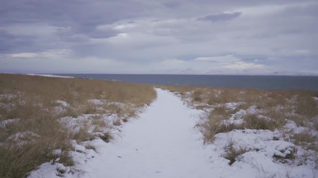vídeos de stock e filmes b-roll de scenic view of black sand beach near snowcapped mountain  in iceland - terreno inóspito