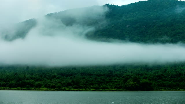 Scenic View of Fog Flowing on Tropical Trees on Mountains, Time-lapse video
