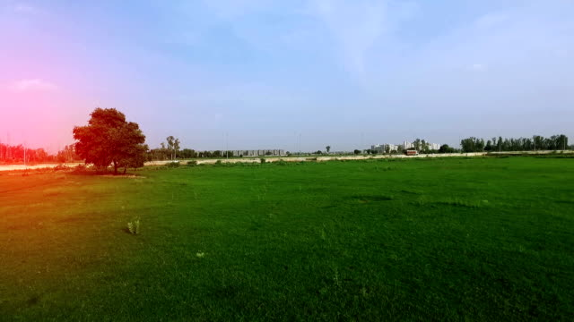scenic view of green grass outdoor - plain stock videos & royalty-free footage