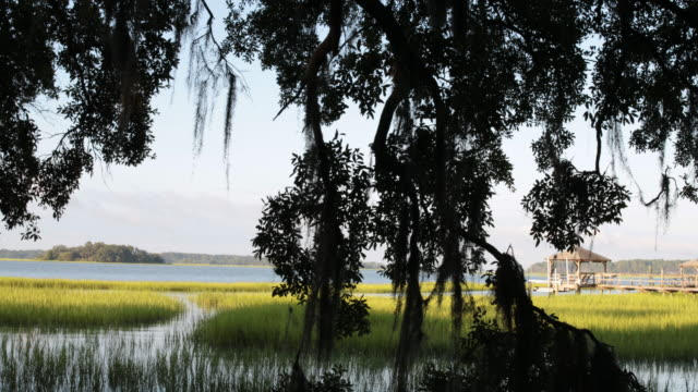 pan scenic view of lake and wooden dock, bluffton, south carolina - carolina del sud video stock e b–roll