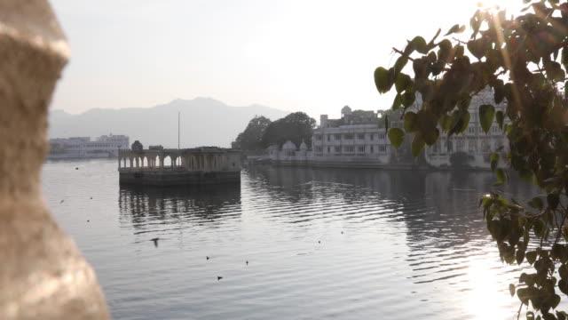 vidéos et rushes de vue panoramique sur le lac pichola et palais flottants - groupe moyen d'animaux