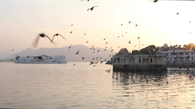 scenic view of lake pichola and floating palaces - palacio stock videos & royalty-free footage