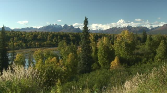 ws scenic view of mountain range / byers lake, alaska, usa - denali national park stock videos & royalty-free footage