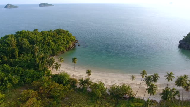 Scenic View of Tropical White Beach with Sunlight, Aerial video