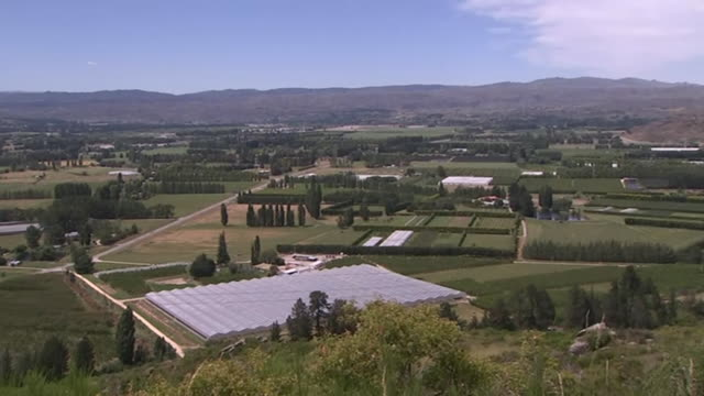 scenic view overlooking central otago landscape including fruit orchards new zealand - otago region stock videos & royalty-free footage