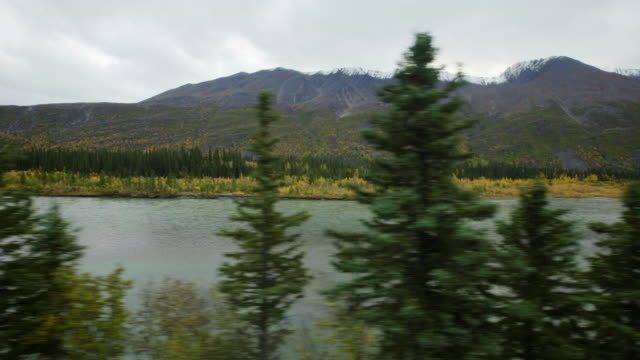 scenic view - denali national park stock videos & royalty-free footage