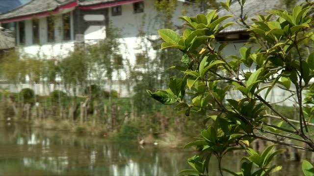 cu zi zo ws pan scenic village with pond and mountains, lijiang, china - 枝点の映像素材/bロール