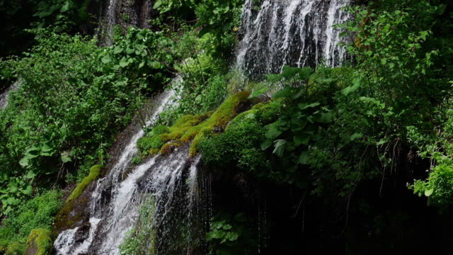 scenic waterfall with lush foliage in early summer (super slow motion) - satoyama scenery stock videos & royalty-free footage