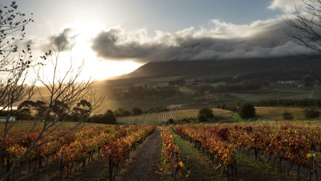T/L scenics of Hemel en Aarde Valley as clouds move across sky, Hermanus, South Africa