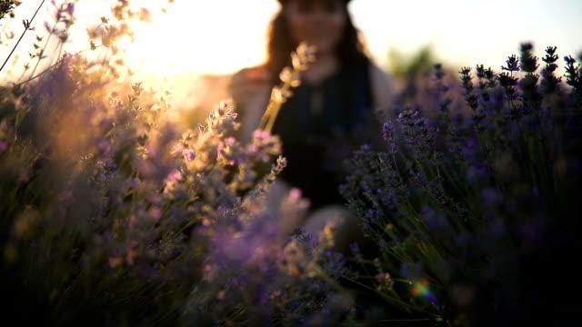 Parfum de l'été