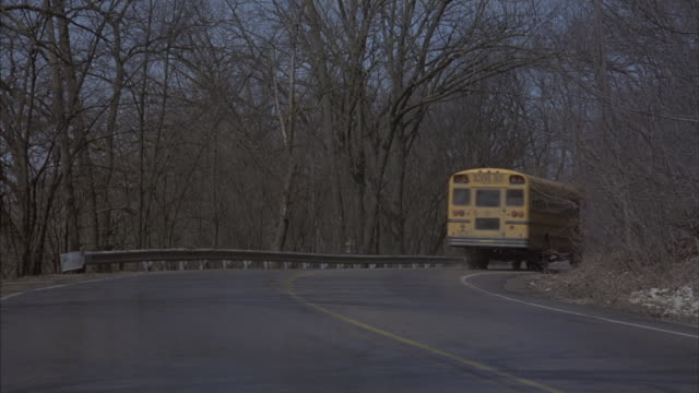 A school bus drives down a country road.