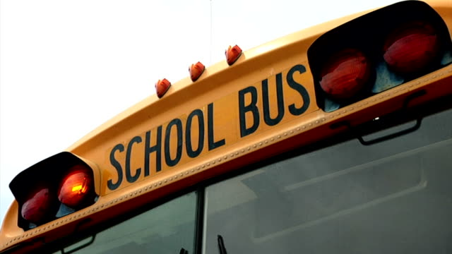school bus front lights blinking - bus driver stock videos & royalty-free footage
