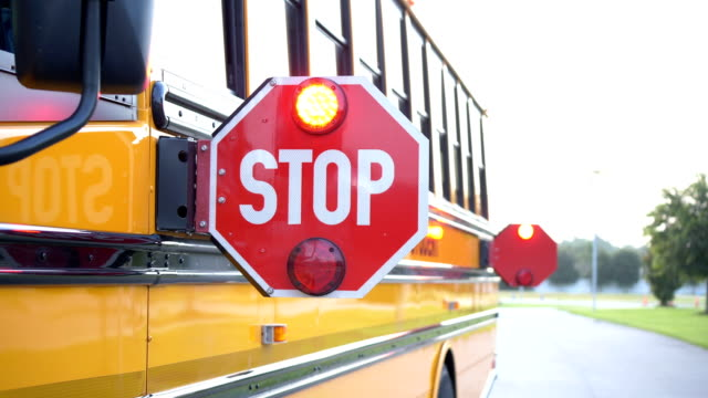school bus stop sign - stop sign stock videos & royalty-free footage