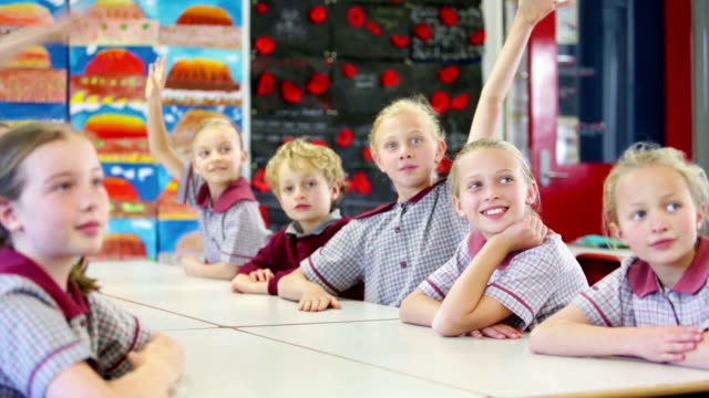 school children in the classroom - classroom stock videos & royalty-free footage