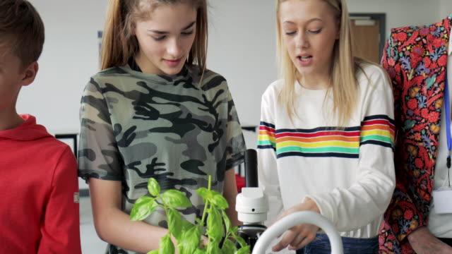 school children working in lab - uguaglianza video stock e b–roll