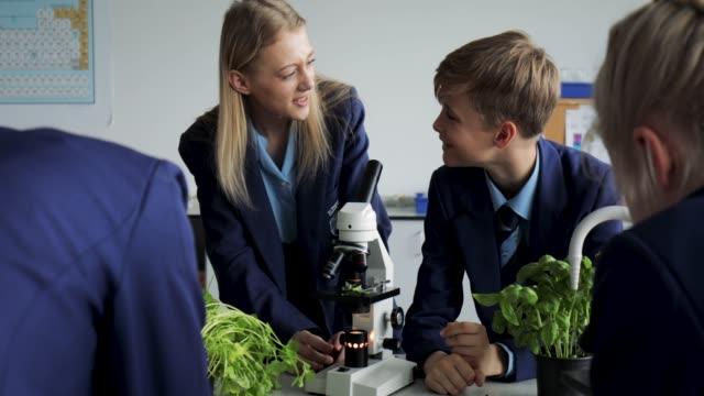 school children working in lab - school uniform stock videos & royalty-free footage