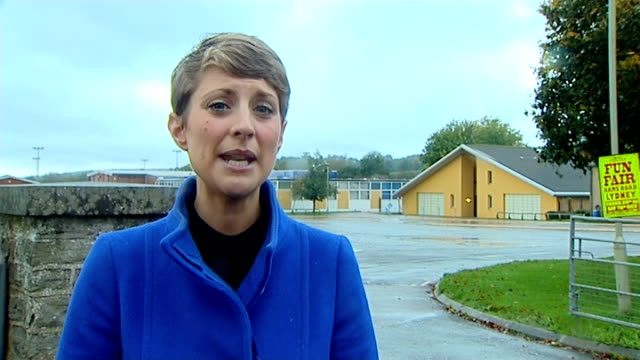 school closed to be fumigated of 'false widow' spiders gloucestershire forest of dean ext reporter to camera 'the dean academy' school buildings 'the... - arachnid stock videos & royalty-free footage