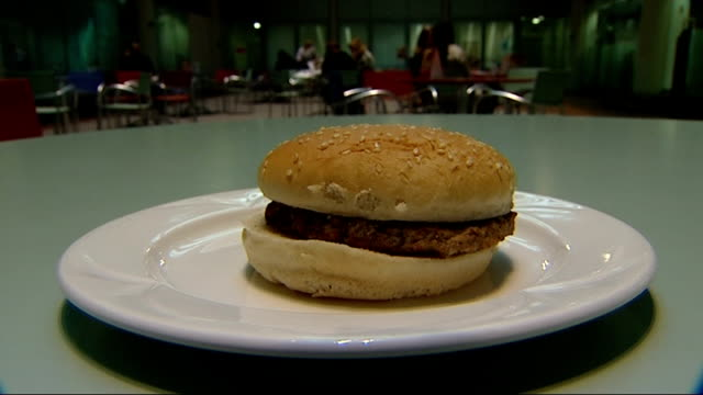 school dinners / new government guidelines criticised england int 'unhealthy' food on plate as is replaced by salad reporter sitting with school... - vita non sana video stock e b–roll