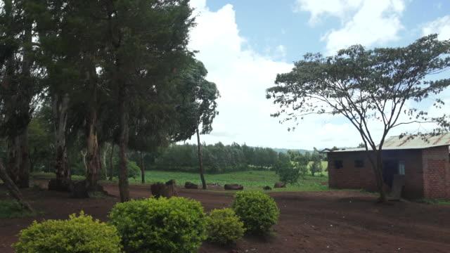 School Exterior Wide Windy