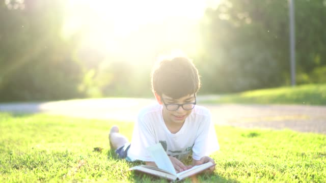 schoolboy reading book by sunset - spectacles stock videos & royalty-free footage