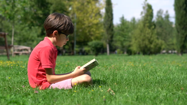 schoolboy reading book on the grass - reading stock videos & royalty-free footage