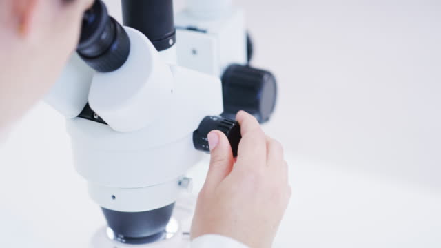 science and technology have become indistinguishable in the lab - pathologist stock videos & royalty-free footage