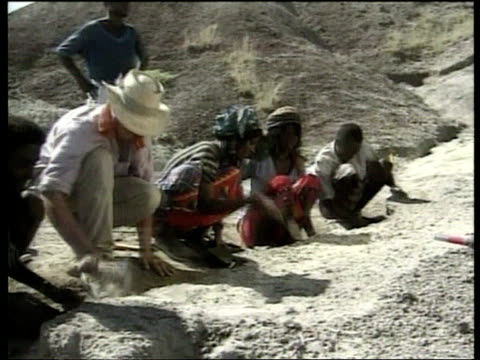 fossilied remain of ape man species found reuters ethiopia bouri afar desert mounds of earth from archeological dig which has discovered remains of... - reuters stock videos & royalty-free footage