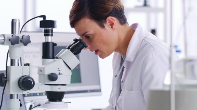 science is about paying close attention to every little detail - pathologist stock videos & royalty-free footage