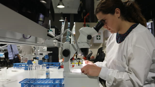 science researcher with a microscope - stem topic stock videos & royalty-free footage