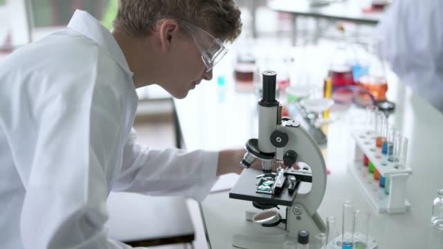 科学の学生は顕微鏡の下でスライドを観察する - 科学者点の映像素材/bロール