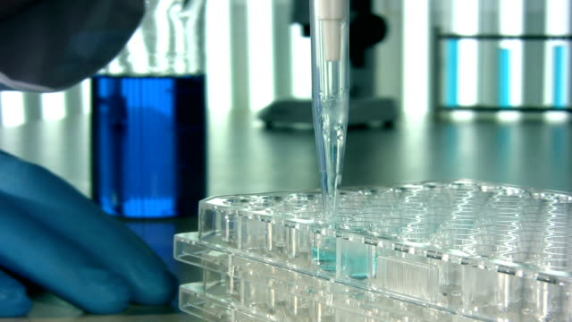 scientific research laboratory - sample holder stock videos & royalty-free footage