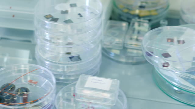 Scientific Samples in Petri Dishes and Containers on a Shelf in Laboratory