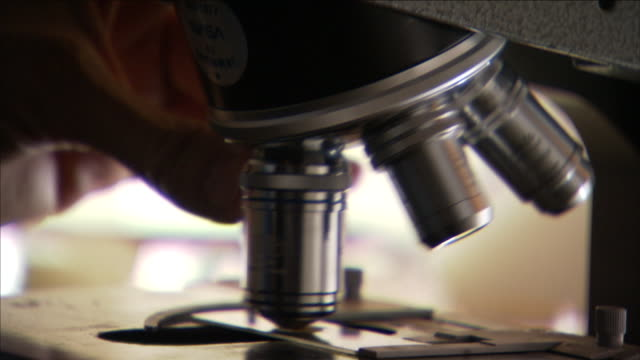 a scientist adjusts the lenses on a microscope. - microscope stock videos & royalty-free footage