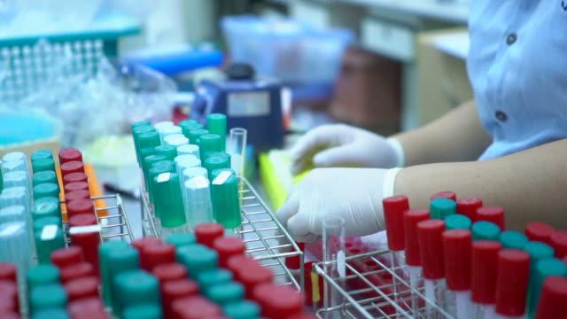 scientist and bio lab experiment - ricerca medica video stock e b–roll