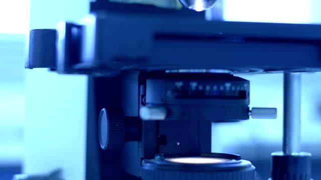wissenschaftler labor experimentieren und bio - biochemiker stock-videos und b-roll-filmmaterial