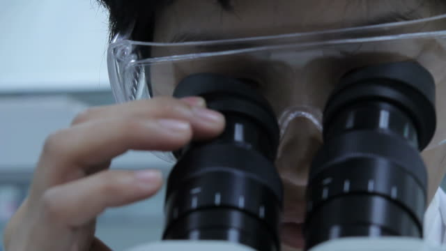 hd : scientist and lab experiment - microscope slide stock videos and b-roll footage