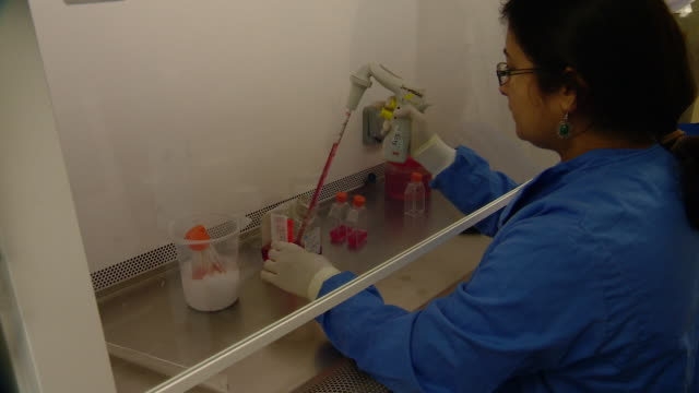 a scientist at the clinical biomanufacturing facility in oxford works on mers vaccine samples from behind a protective screen - adults only stock videos & royalty-free footage
