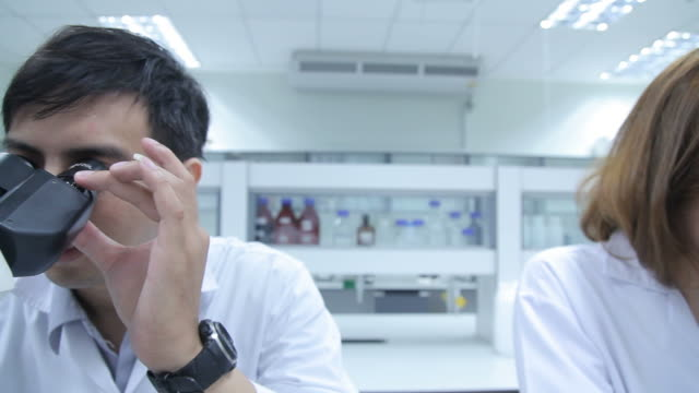 hd: scienziato coppia utilizzando un microscopio - vetreria da laboratorio video stock e b–roll