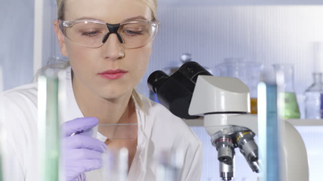 Scientist, doctor, student, using microscope in laboratory