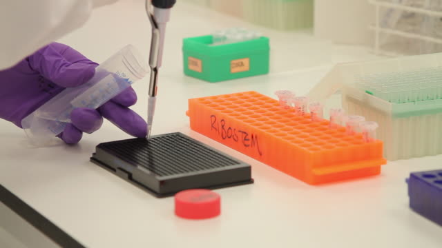 scientist dropping liquid into vial in genetic laboratory - oxfordshire stock videos and b-roll footage
