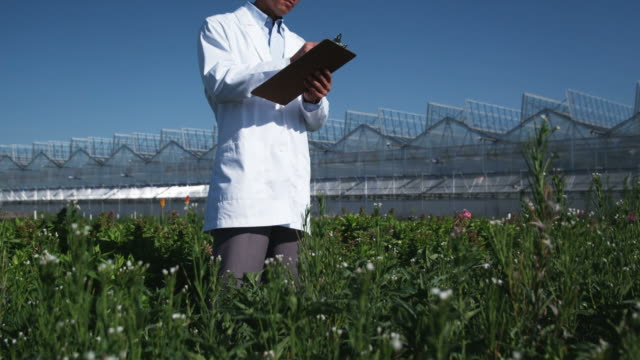 MS TU Scientist examining flora at a greenhouse / Salem, Utah, USA.