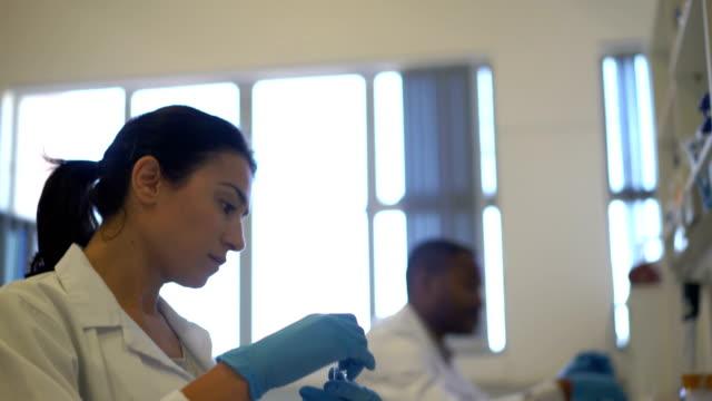Scientist examining medical sample in laboratory