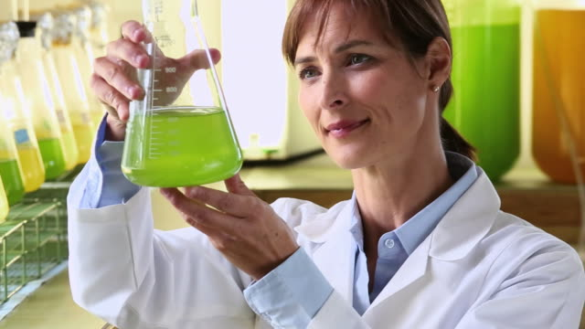 cu pan scientist in biology tech laboratory inspecting liquid in beaker / eastville, virginia, united states - eastville stock videos and b-roll footage