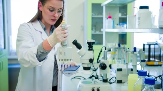 scientist in biotechnology laboratory - genetic modification stock videos & royalty-free footage