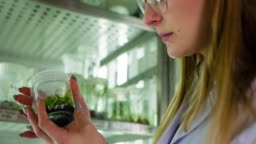 Scientist in biotechnology laboratory