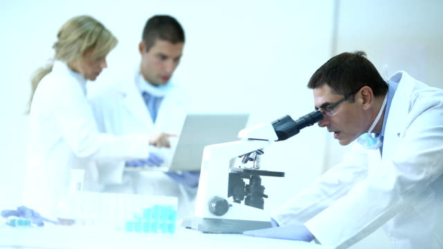 scientist in lab. - biotechnology stock videos & royalty-free footage