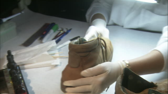 a scientist inspects a boot in a forensics lab. - forensic science stock videos & royalty-free footage