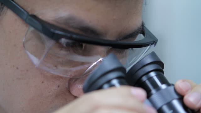 scientist is using with microscope - science and technology stock videos & royalty-free footage