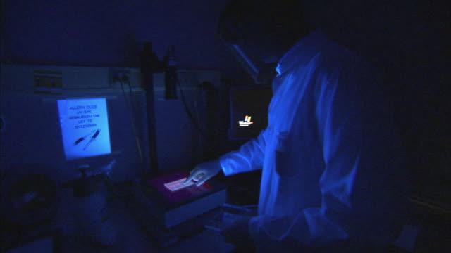 ms scientist looking at dna result under black light, boxmeer, netherlands - boxmeer stock videos & royalty-free footage